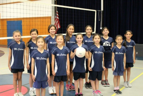 MCL JV Volleyball Team